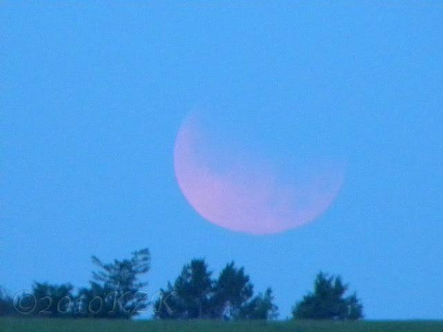 DSCN5828 26 JUN 10 Lunar Eclipse