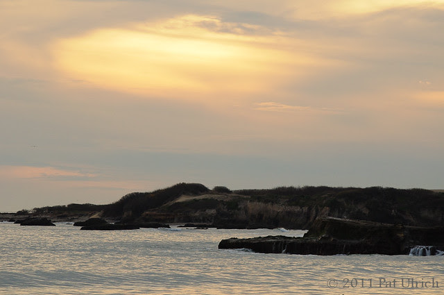 Año Nuevo Sunset -- Pat Ulrich Wildlife Photography