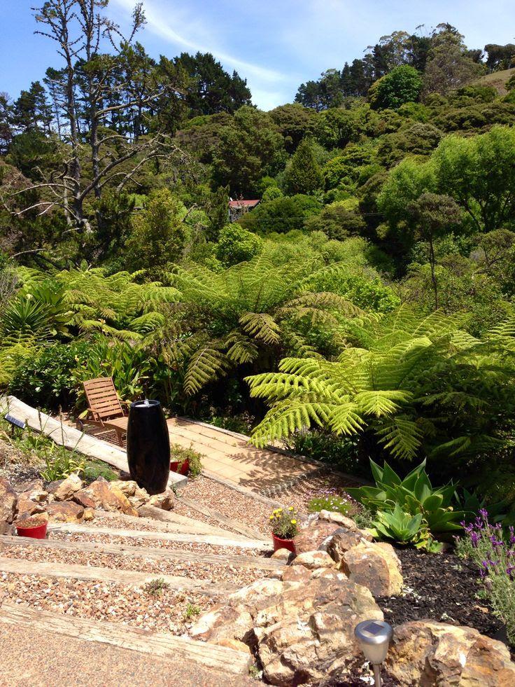 Landscaping ideas for backyard nz