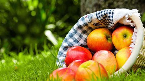 Apples Desktop Wallpaper