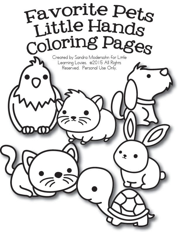 Pet Animal Colouring Pages Coloring And Drawing