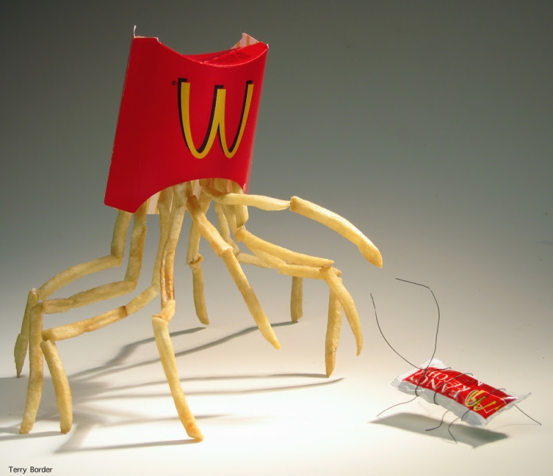 Funny bento objects by Terry Border - mcdonalds fries ketchup