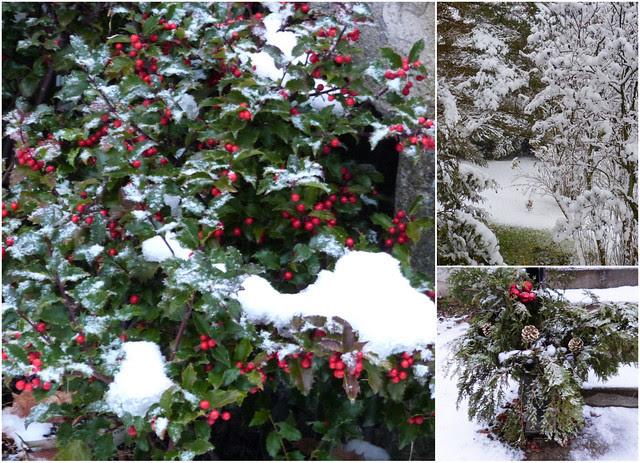 Nature Celebrates Christmas