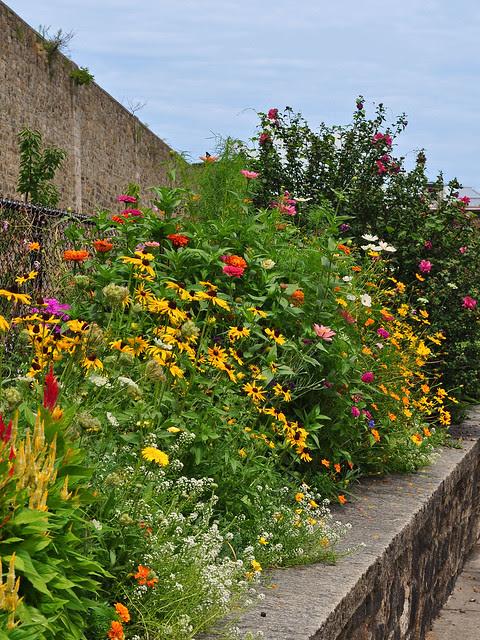 Terrace Garden (4)