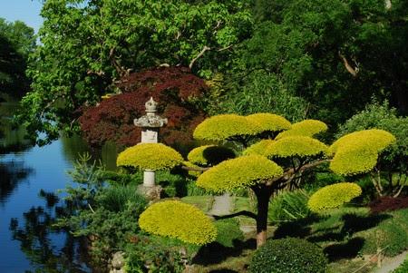Le Jardin Japonais Du Parc Oriental De Maulvrier Geo