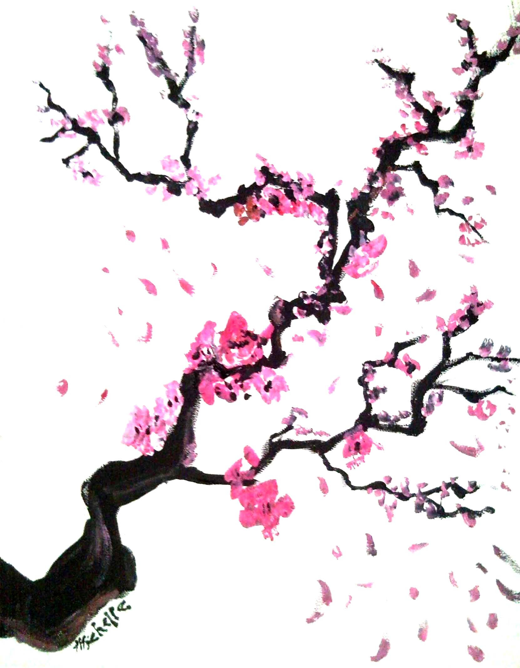 The Best Free Cherry Tree Drawing Images Download From 50 Free