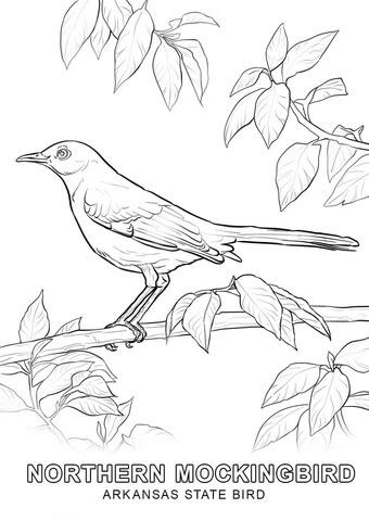 33 vogelschablonen zum ausdrucken - besten bilder von ausmalbilder