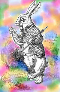 White_rabbit_with_colours