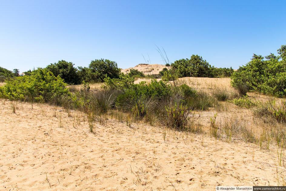 Песчаные дюны близ озера Кориссион