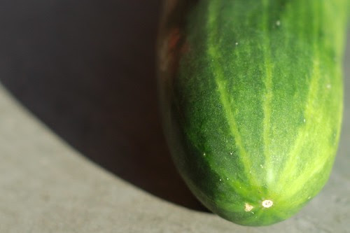 Cucumber by Eve Fox, Garden of Eating blog