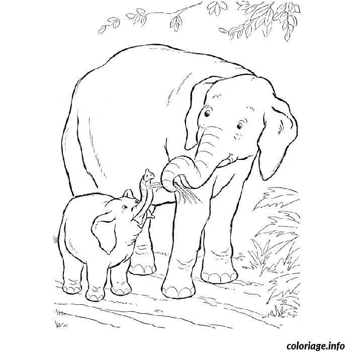 Coloriage Elephant Savane Jecoloriecom