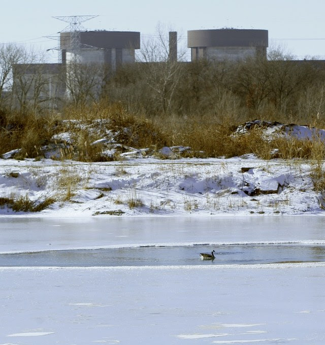 Image: Bob Scamen's pond in Braidwood, Ill., and the Braidwood Nuclear Power Station