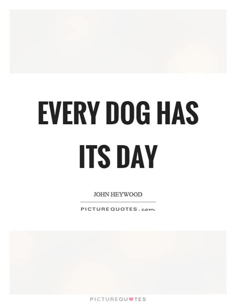 Every Dog Has Its Day Quotes