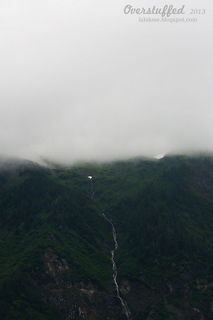 A foggy day in Juneau Alaska