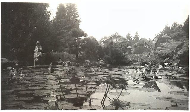 Unknown oriental gardens 3