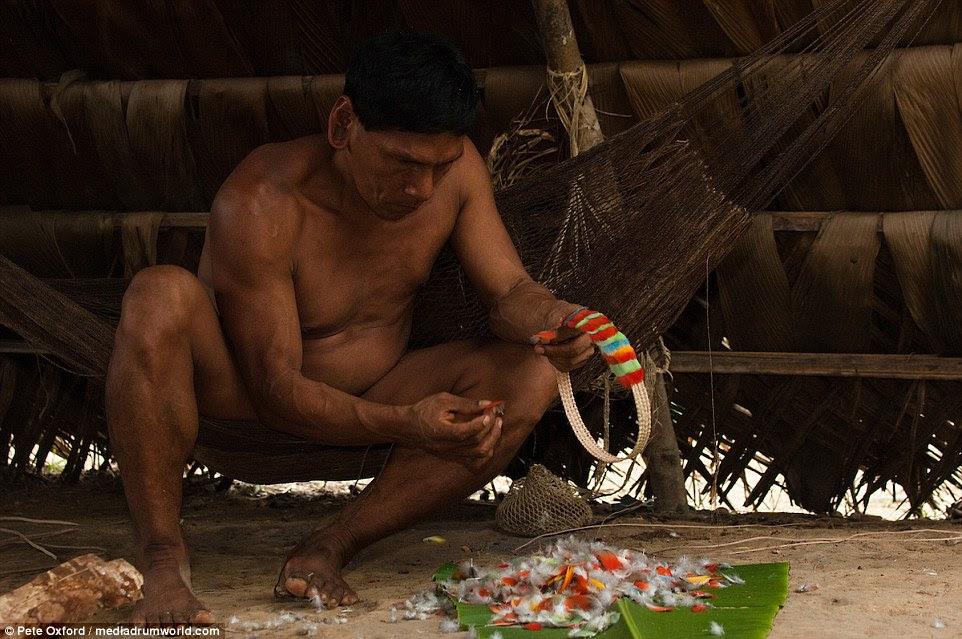 Um homem constrói um colar fora das penas do pássaro.  A tribo ganhar algum dinheiro com a venda de artesanato para os turistas