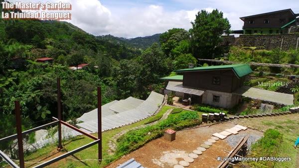 The Masters Garden Organic Farm, La Trinidad Benguet