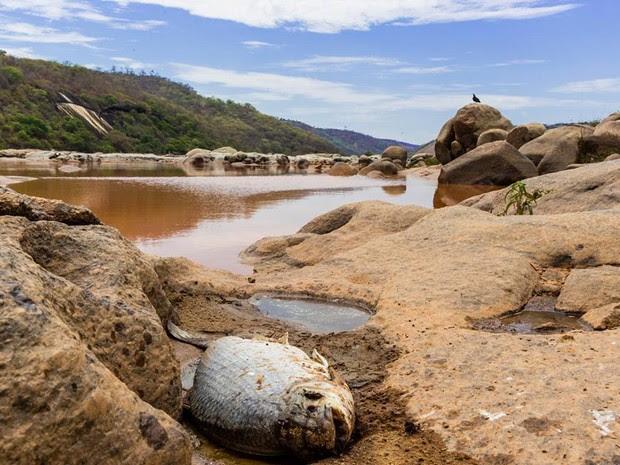 Resultado de imagem para DESASTRE AMBIENTAL MINAS GERAIS BRASIL REAL DE MARIANA NO RIO DOCE E PARA MAR DO ESPIRITO SANTO EM NOVEMBRO DE 2015