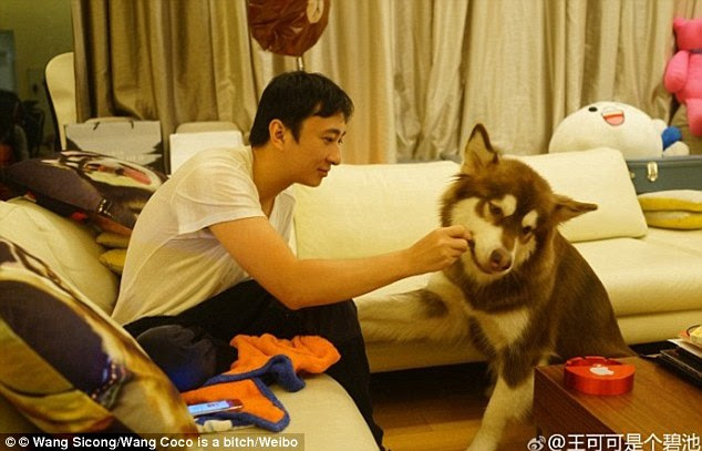 Fatherly love: Coco is pictured playing with Sicong whose mega rich father is worth £23 billion