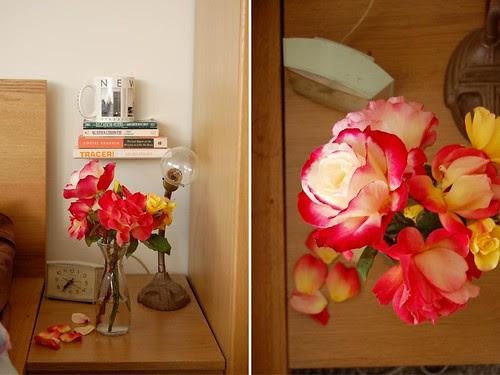 roses dyptech