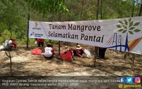 Kunjungan Wisata ke Hutan Mangrove tak Terdampak Tumpahan Minyak - JPNN.COM