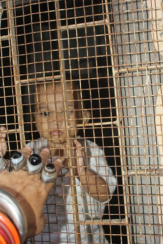 The Child In A Birds Cage by firoze shakir photographerno1