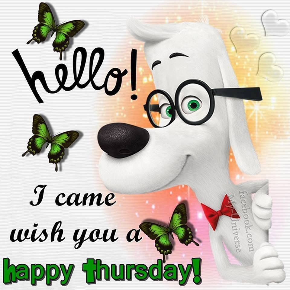 Came To Wish You A Happy Thursday Pictures Photos And Images For