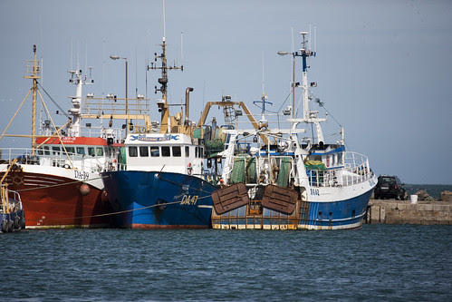 Fishing Fleet - Howth by infomatique