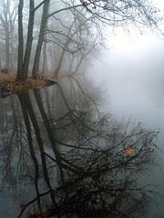 Lake Bailey in the fog