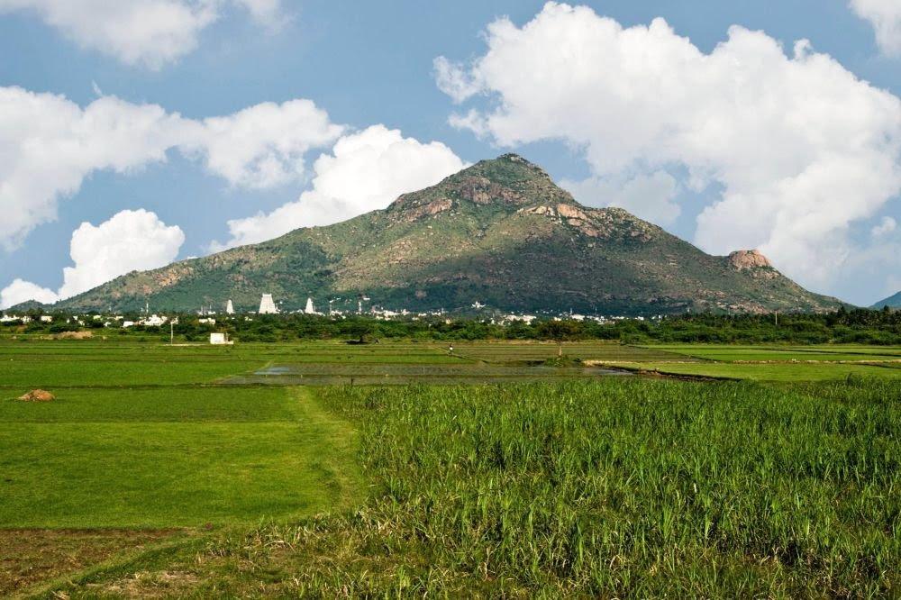 Risultati immagini per arunachala mountain