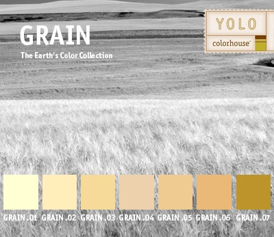 YOLO Colorhouse GRAIN color family
