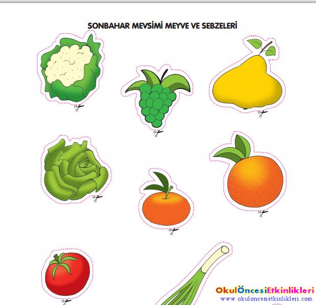 Sonbahar Mevsimi Meyve Ve Sabzeler Okul öncesi Etkinlikleri