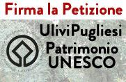 Ulivi Pugliesi Patrimonio UNESCO