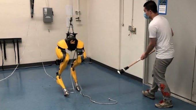 This Robot Taught Itself to Walk in a Simulation—Then Went for a Stroll in Berkeley