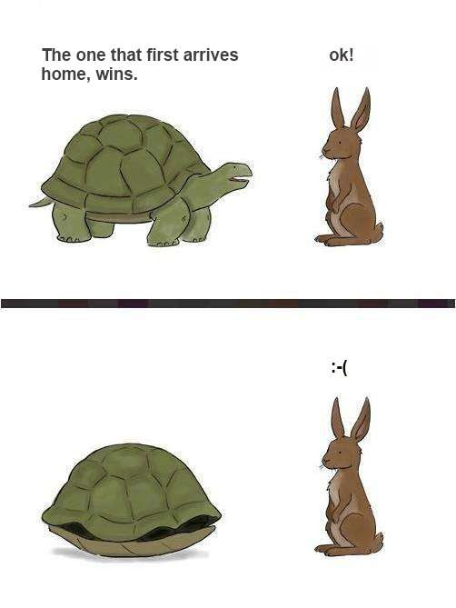 The Rabbit And The Turtle Sloyucom