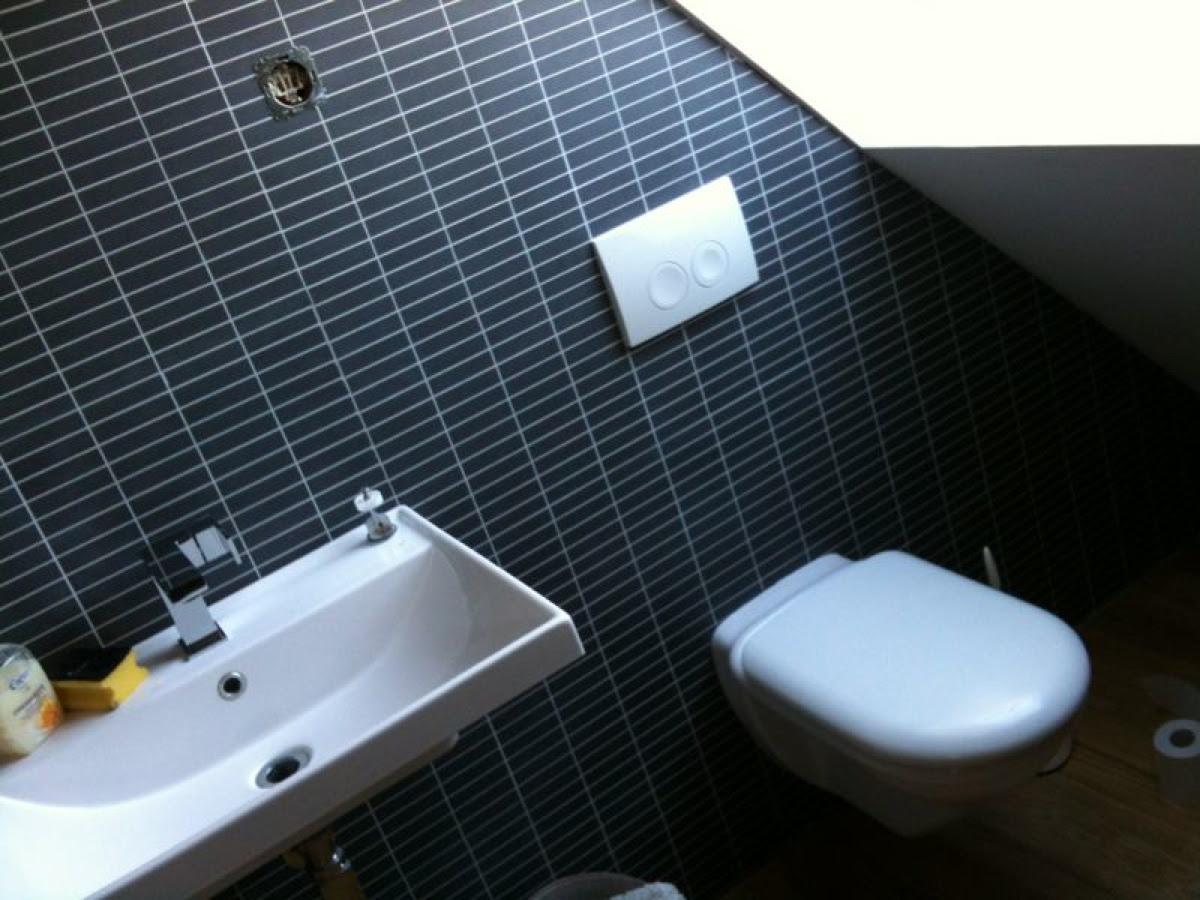 Montierte Toiletten Drückerplatte