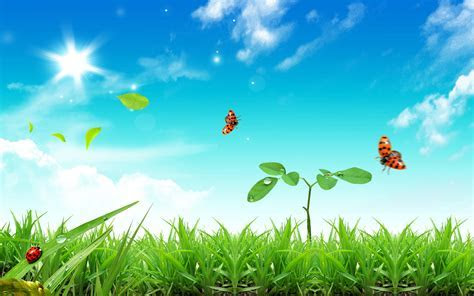 Fresh Life Wallpapers   HD Wallpapers   ID #3918