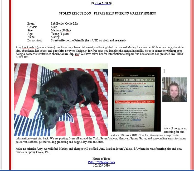 Craigslist Watertown New York Pets | Pets Animals US