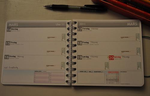 diary :: dagboka #2