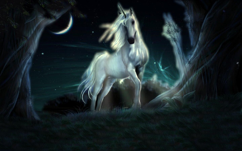 Unicorn Backgrounds For Desktop  Wallpaper Cave