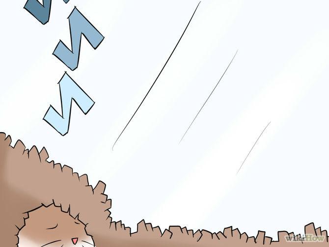 Tame Your Gerbils Step 8.jpg