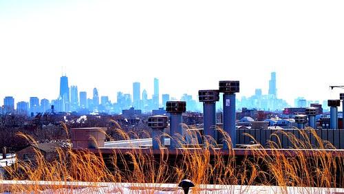 (100E4557) Winter Chicago Skyline (e)