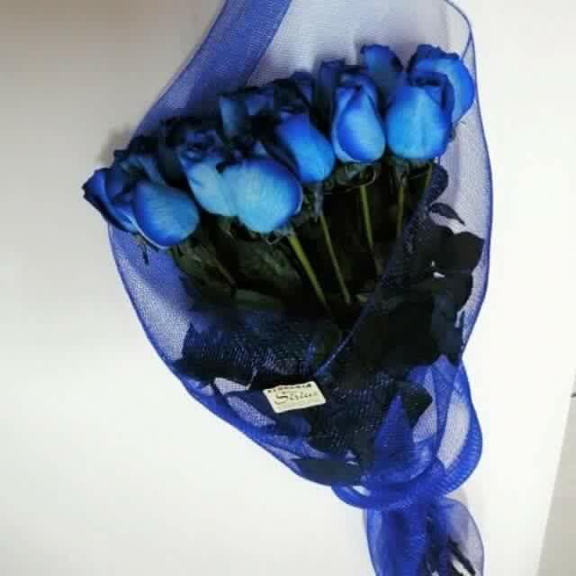 Bouquet De 18 Rosas Azules Bou52 Envia Flores Y Regalos En Tijuana