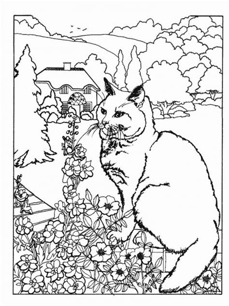 advanced coloring pages  nature  animals coloringstar