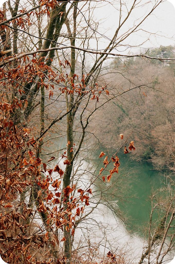 Arve side river 1.2 bis