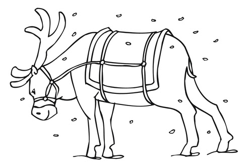 65 Cartoon Reindeer Coloring Pages  Images
