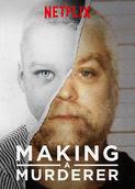 Making a Murderer | filmes-netflix.blogspot.com