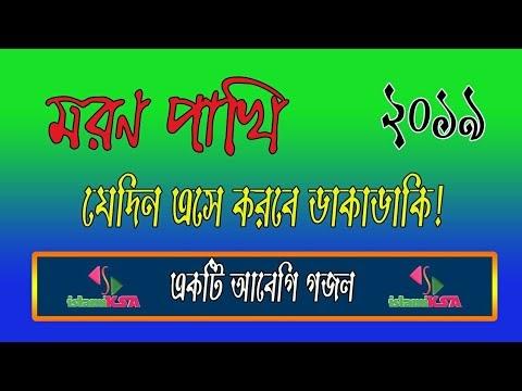 আবেগি গজল মরণ পাখি !Islamic video by islamiKSA channel.