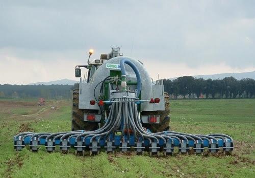 Resultado de imagen para Los efluentes porcinos pueden nutrir el suelo