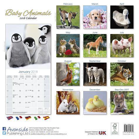 Baby Animals Calendar 2018 30125 18   Wildlife   Animals